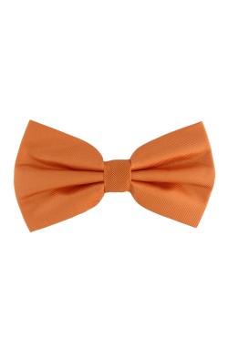 Papion Barbatesc, clasic, portocaliu, Buticcochet