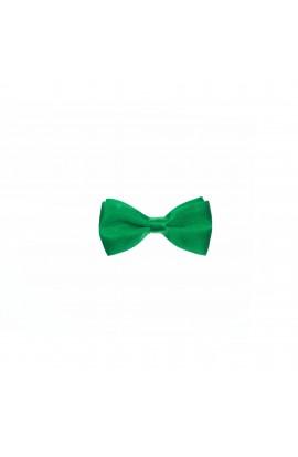 Papion pentru copii, Buticcochet, Verde, 9x5 cm  - PAPC204